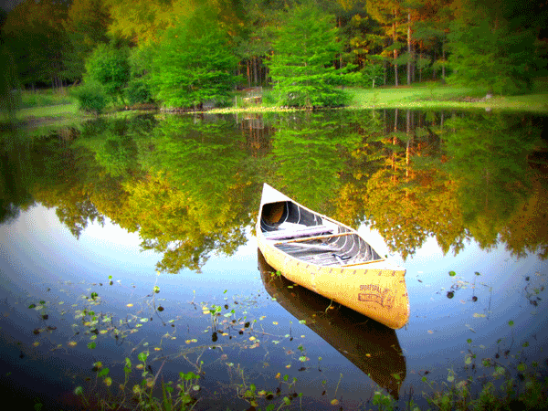 A canoe without a paddle?